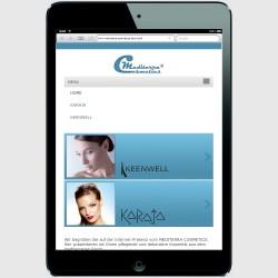 Mobile Version für ein iPad-mini Startseite Menue auf